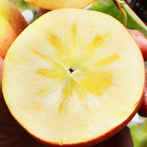 新疆阿克苏苹果