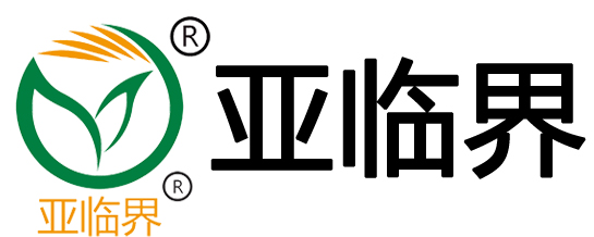 亚临界公司