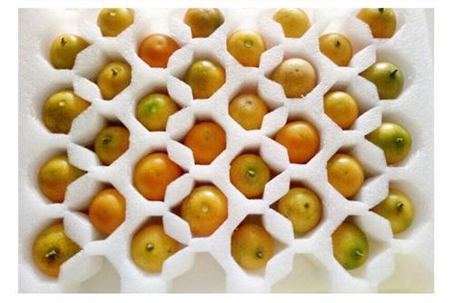 EPE珍珠棉包装材料,水果包装,珍珠棉片材,卷材
