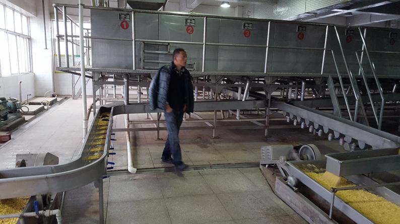 大豆自動浸泡系統