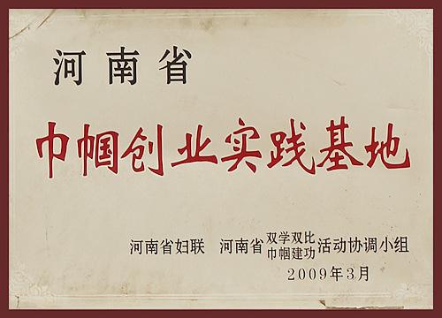 2009河南省巾帼创业实践基地