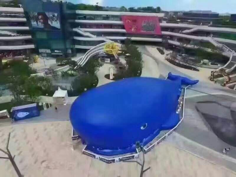 巨型鲸鱼岛乐园