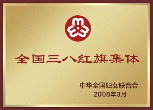 2008年全国三八红旗集体