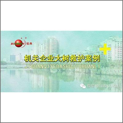 标典大树救护:瑞昌汽车站广场九江香