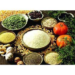 綠色食品零售行業