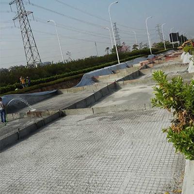 25-2广东中山北外环道路环境综合治理工程