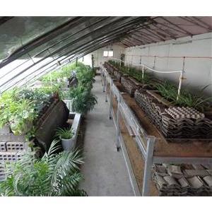生态养殖大棚内部1
