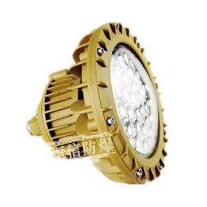 LED防爆灯TCD系列210B
