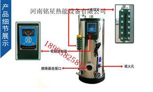 蒸馒头专用蒸汽发生器(免检锅炉)