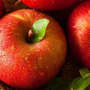 云南富士苹果
