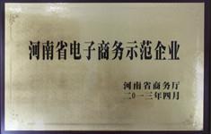 河南省电子商务示范企