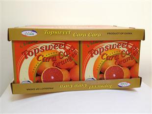 优质橙子包装设计