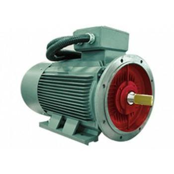 YYZ系列(IP55)壓縮機專用增容三相異步電動機
