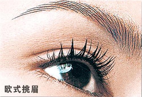 欧式挑眉-作品展示--郑州文彩文化传播有限公司