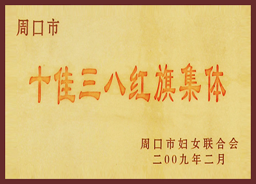 2009十佳三八红旗集体