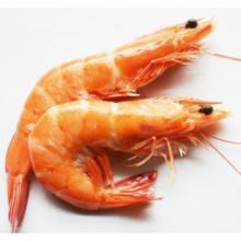 虾饲料粘合剂