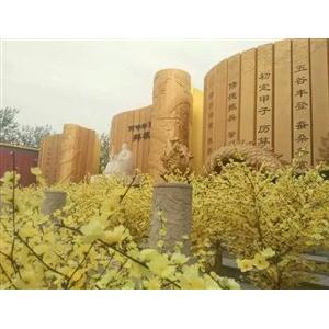 为什么近一百年中国人特别热衷于极点黄帝?