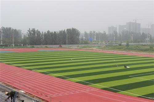 郑州市第一0一中学硅P