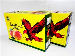 芒果 天地盖水果箱包装设计