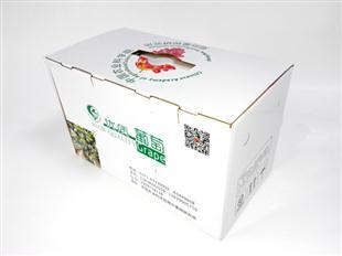 优质葡萄包装箱