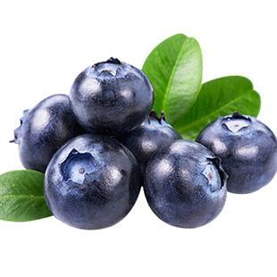 云南国产蓝莓