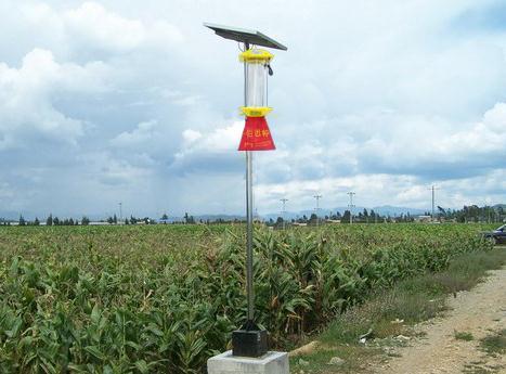 内蒙古--太阳能杀虫灯