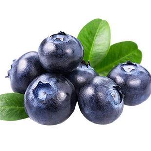 Yunnan native blueberry
